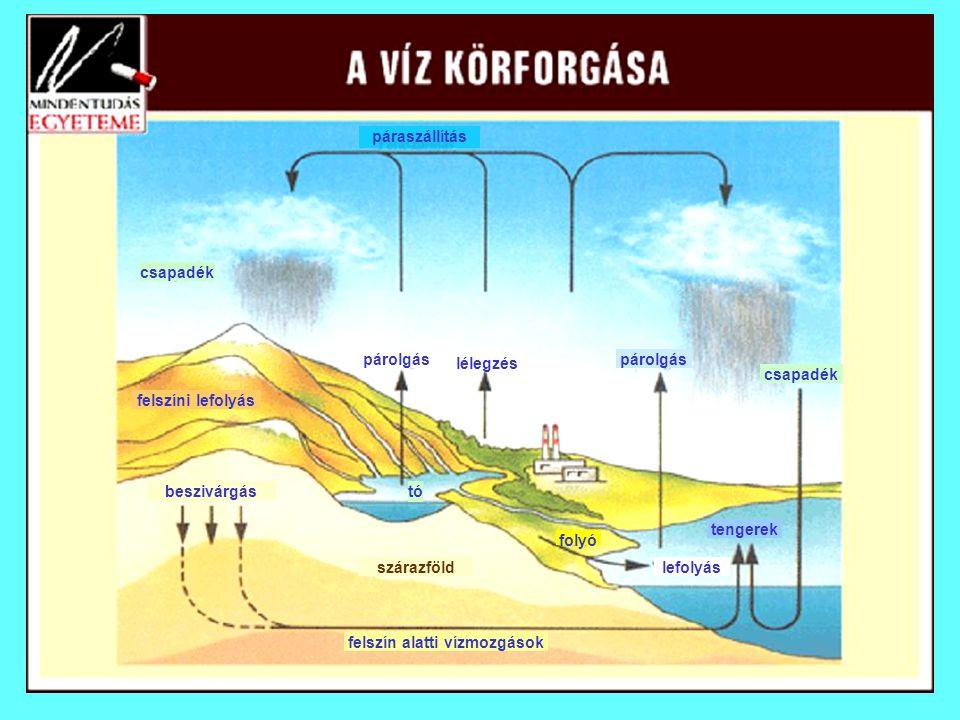 felszín alatti vízmozgások