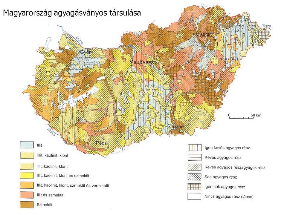 Magyarország agyagásványos társulása