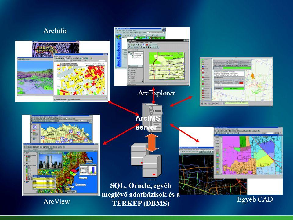 SQL, Oracle, egyéb meglévő adatbázisok és a TÉRKÉP (DBMS)
