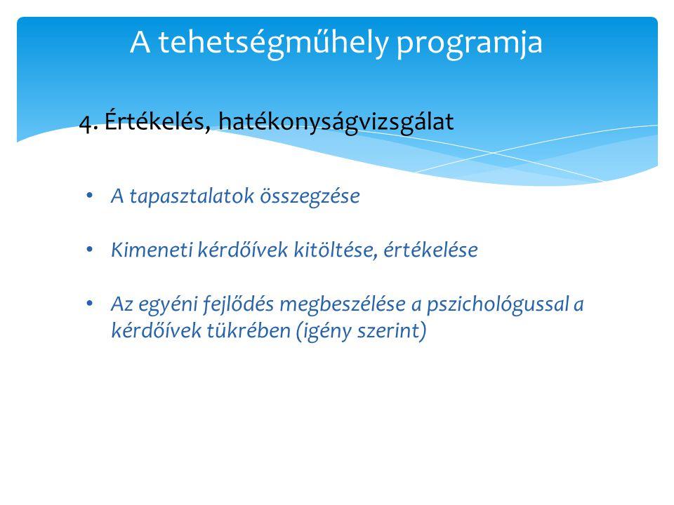A tehetségműhely programja