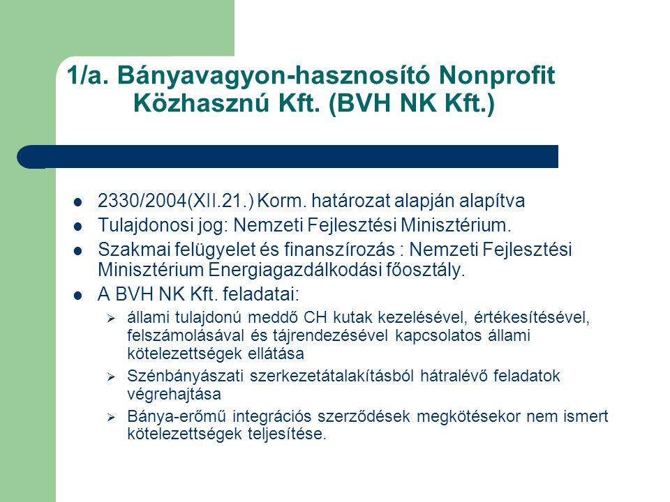 1/a. Bányavagyon-hasznosító Nonprofit Közhasznú Kft. (BVH NK Kft.)
