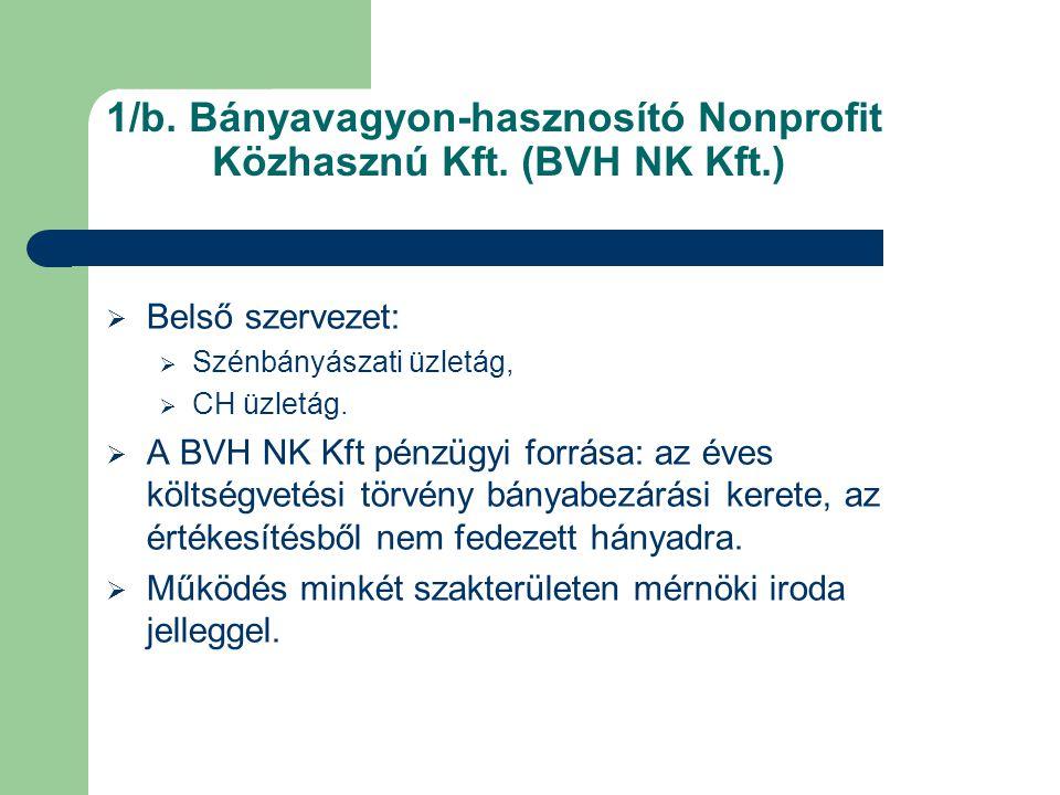 1/b. Bányavagyon-hasznosító Nonprofit Közhasznú Kft. (BVH NK Kft.)