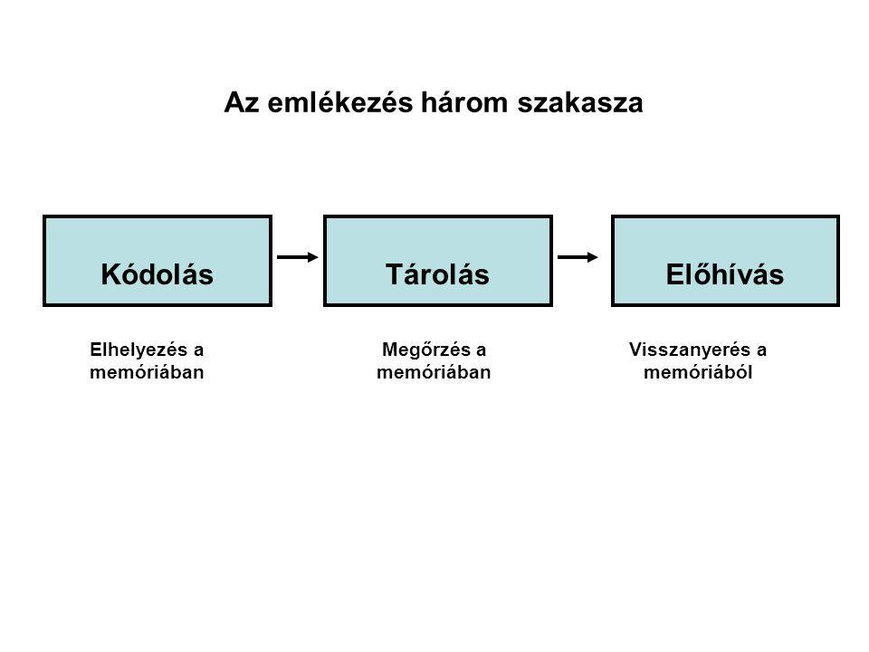 Az emlékezés három szakasza Kódolás Tárolás Előhívás
