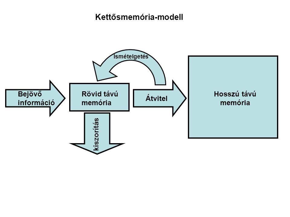 Kettősmemória-modell