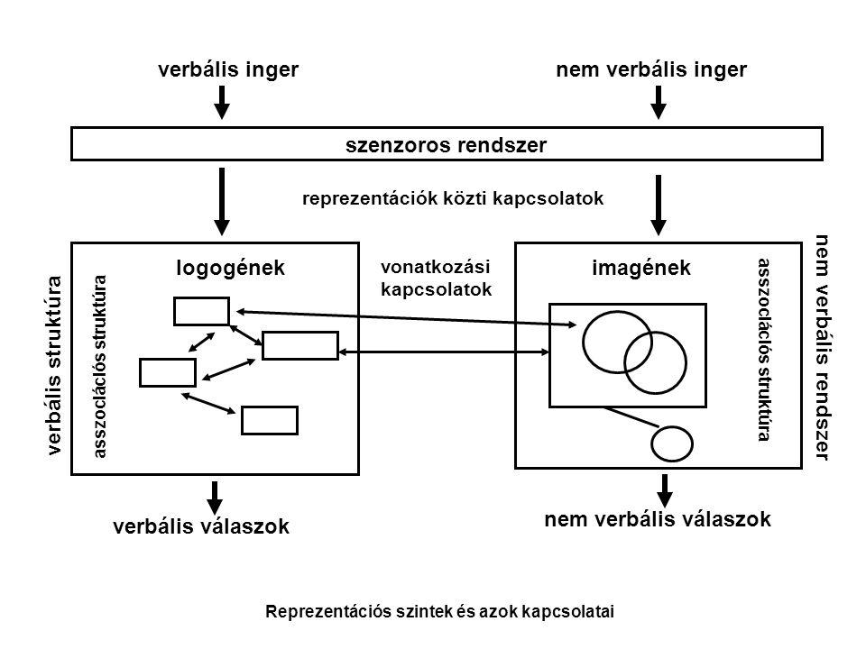 verbális inger nem verbális inger szenzoros rendszer