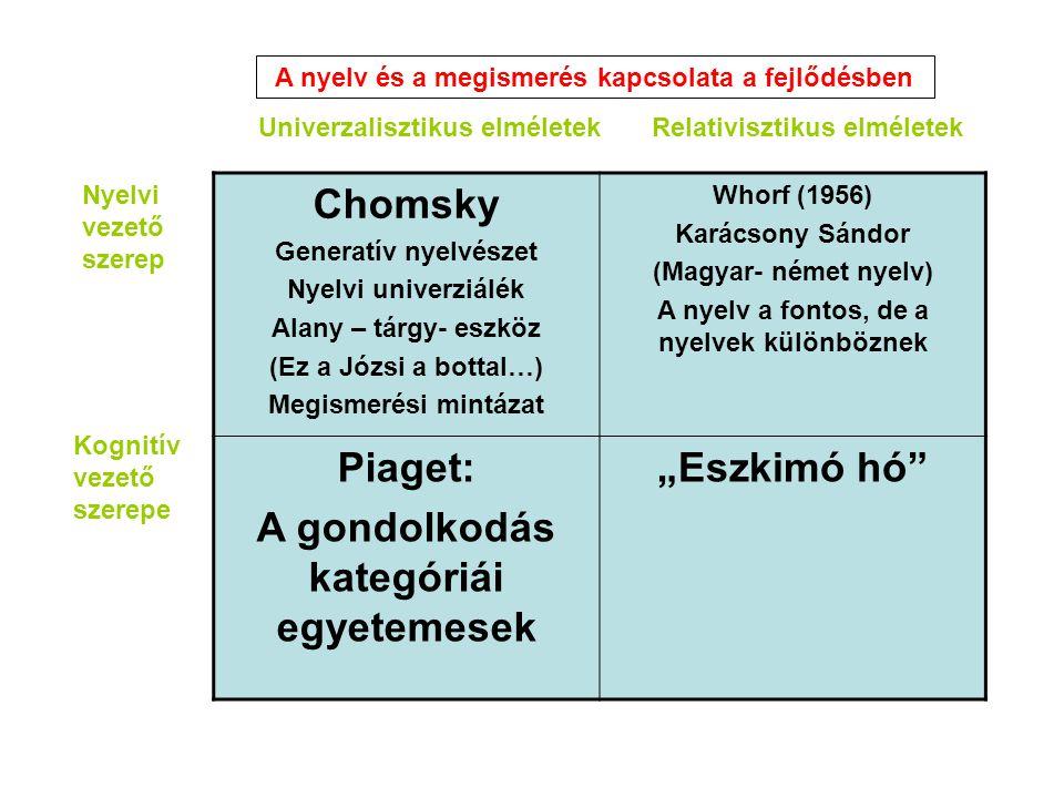 """Chomsky Piaget: A gondolkodás kategóriái egyetemesek """"Eszkimó hó"""