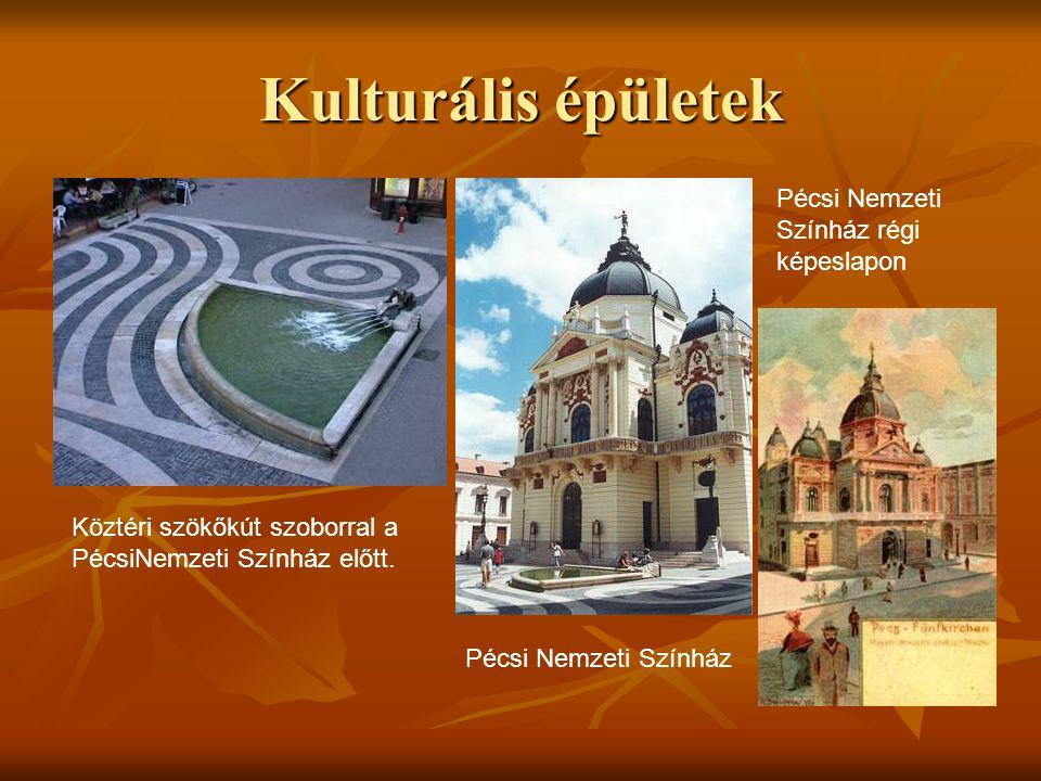 Kulturális épületek Pécsi Nemzeti Színház régi képeslapon