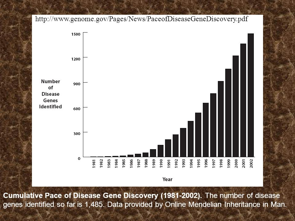 http://www.genome.gov/Pages/News/PaceofDiseaseGeneDiscovery.pdf Cumulative Pace of Disease Gene Discovery (1981-2002). The number of disease.