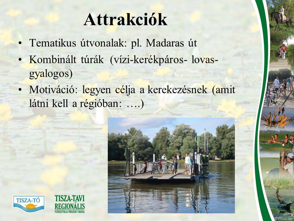 Attrakciók Tematikus útvonalak: pl. Madaras út