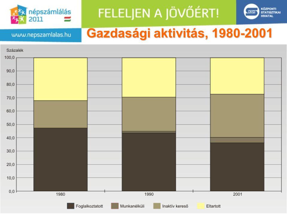 Gazdasági aktivitás, 1980-2001