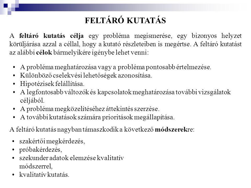 FELTÁRÓ KUTATÁS