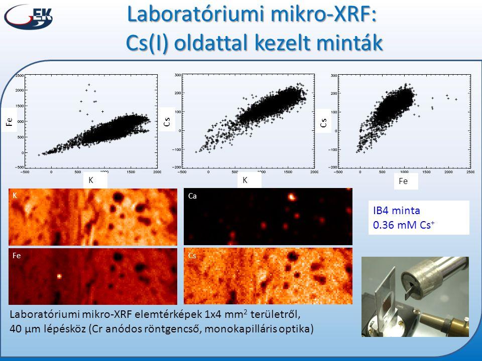 Laboratóriumi mikro-XRF: Cs(I) oldattal kezelt minták