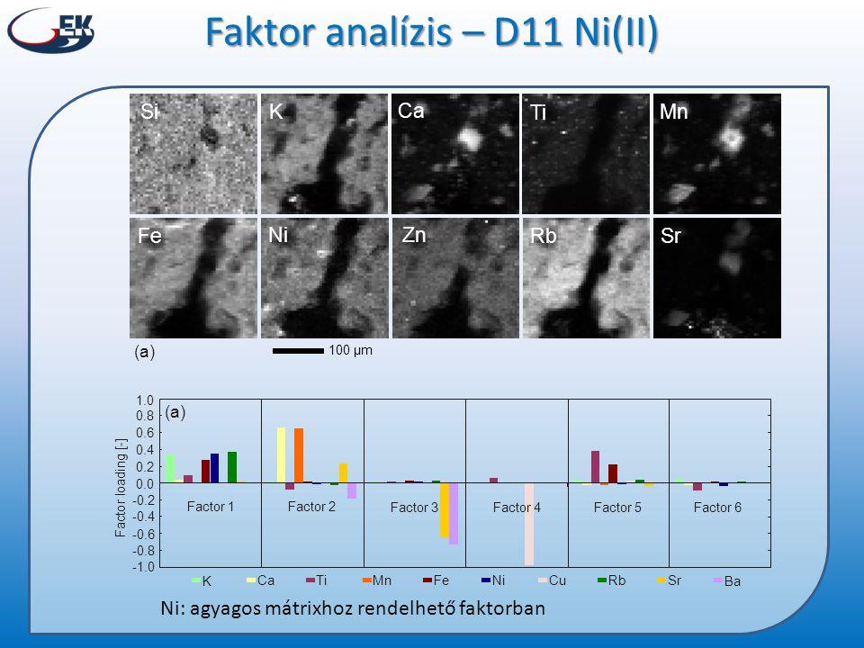 Faktor analízis – D11 Ni(II)