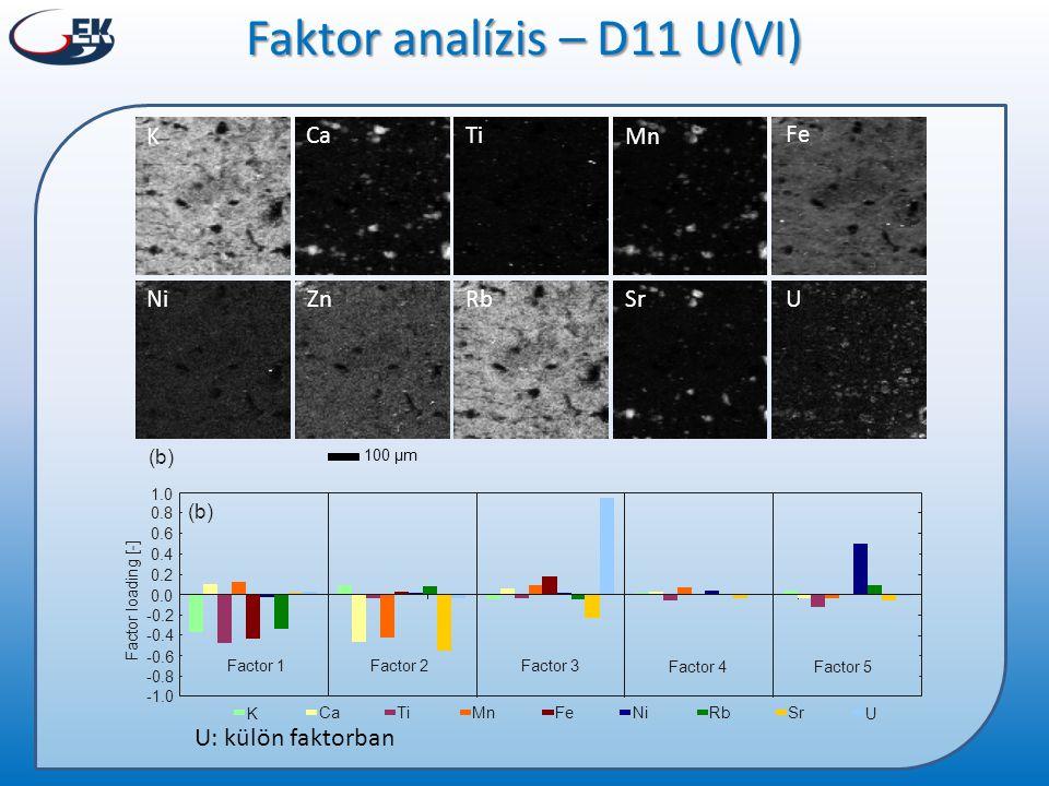 Faktor analízis – D11 U(VI)