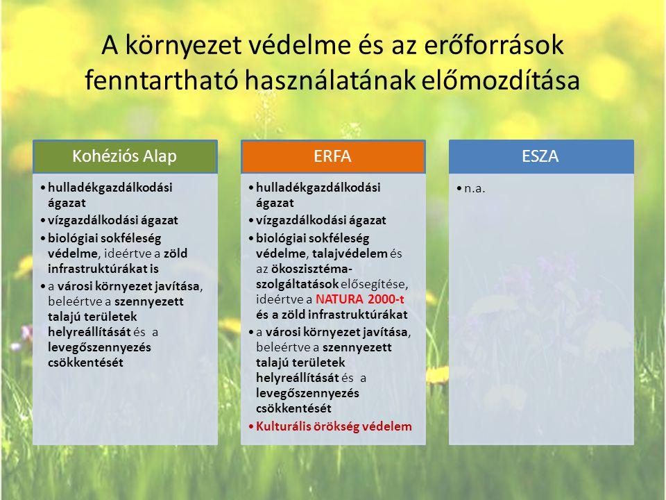 A környezet védelme és az erőforrások fenntartható használatának előmozdítása