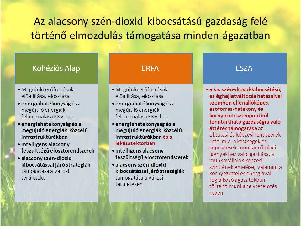 Az alacsony szén-dioxid kibocsátású gazdaság felé történő elmozdulás támogatása minden ágazatban