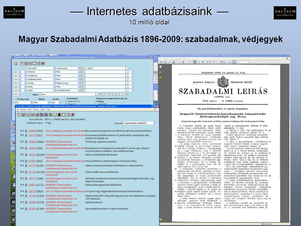 Magyar Szabadalmi Adatbázis 1896-2009: szabadalmak, védjegyek