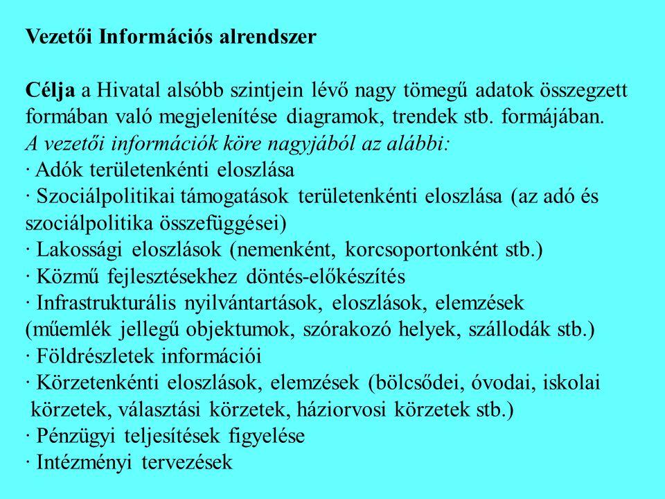 Vezetői Információs alrendszer