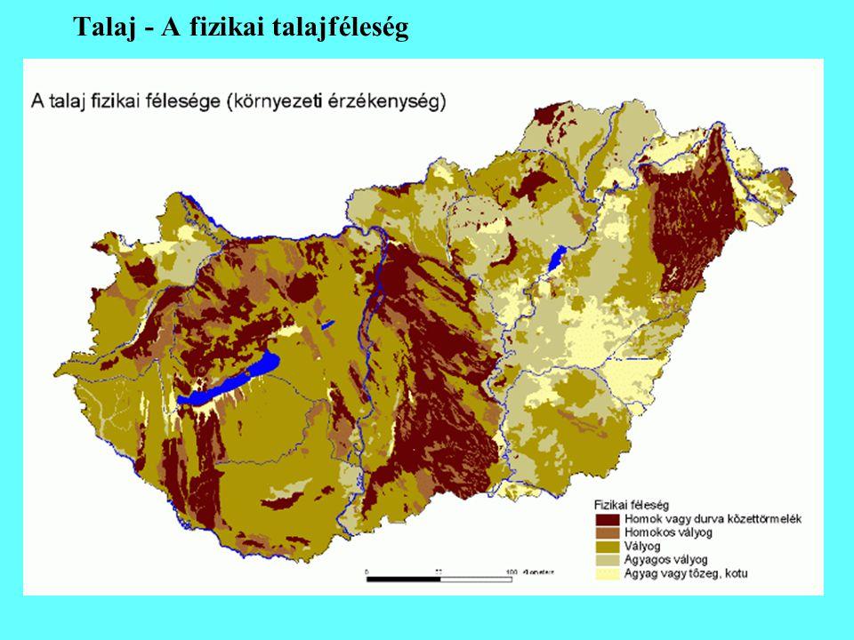 Talaj - A fizikai talajféleség