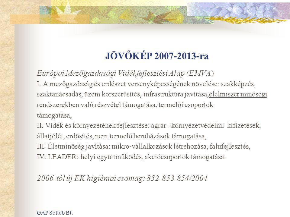 JÖVŐKÉP 2007-2013-ra Európai Mezőgazdasági Vidékfejlesztési Alap (EMVA) I. A mezőgazdaság és erdészet versenyképességének növelése: szakképzés,
