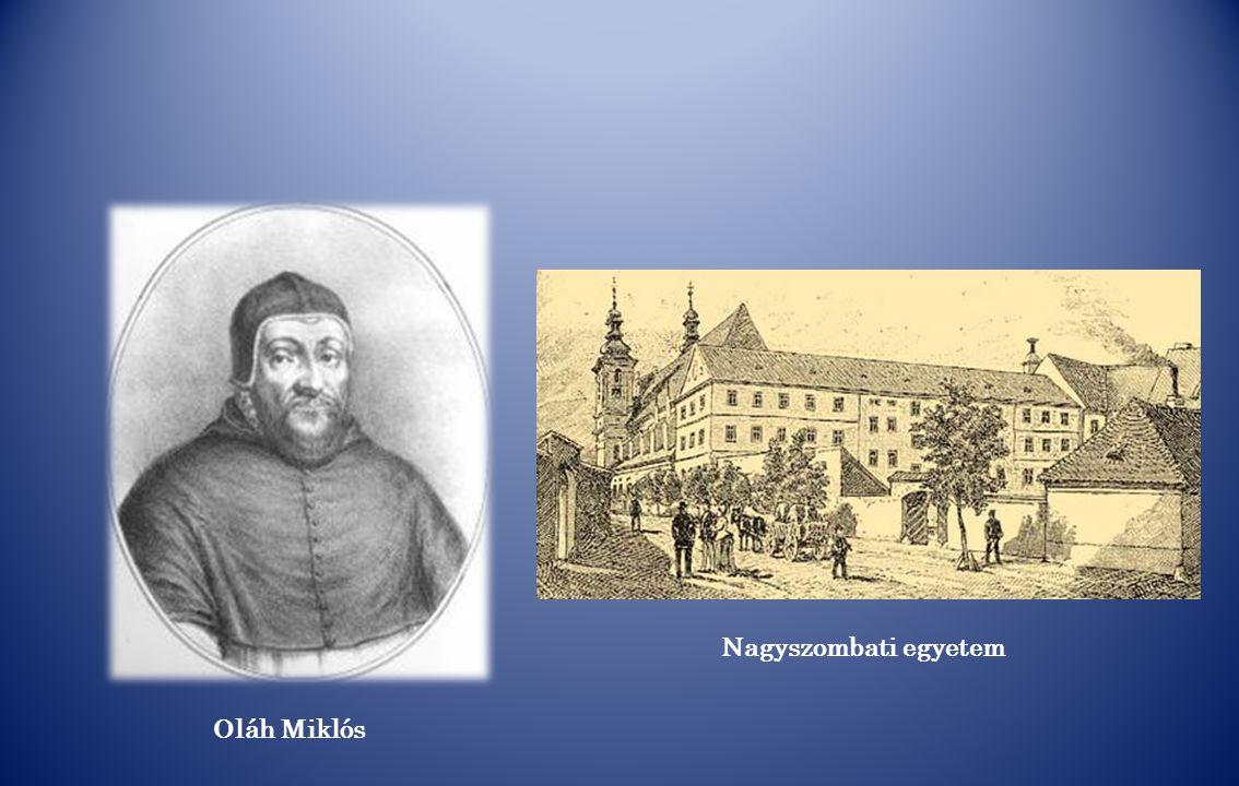 Nagyszombati egyetem Oláh Miklós