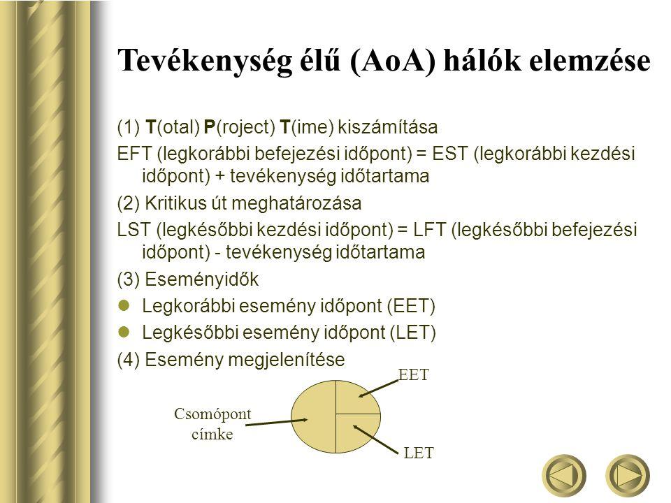 Tevékenység élű (AoA) hálók elemzése
