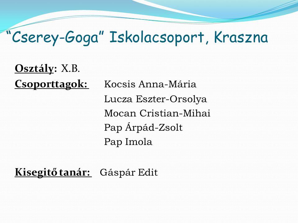 Cserey-Goga Iskolacsoport, Kraszna