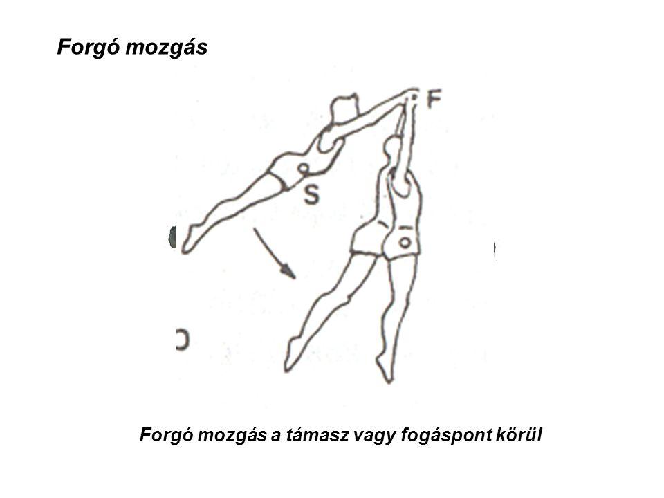 Forgó mozgás a támasz vagy fogáspont körül