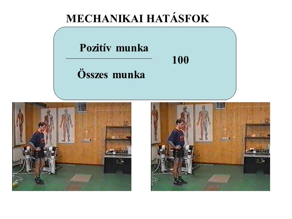 MECHANIKAI HATÁSFOK Pozitív munka Összes munka 100