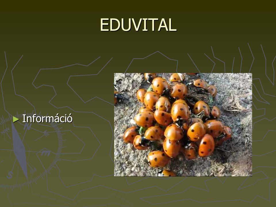 EDUVITAL Információ
