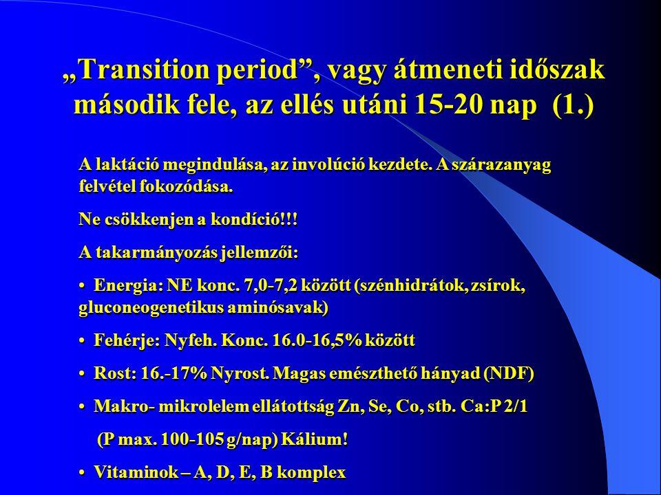 """""""Transition period , vagy átmeneti időszak második fele, az ellés utáni 15-20 nap (1.)"""