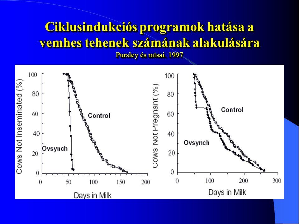 Ciklusindukciós programok hatása a vemhes tehenek számának alakulására Pursley és mtsai. 1997