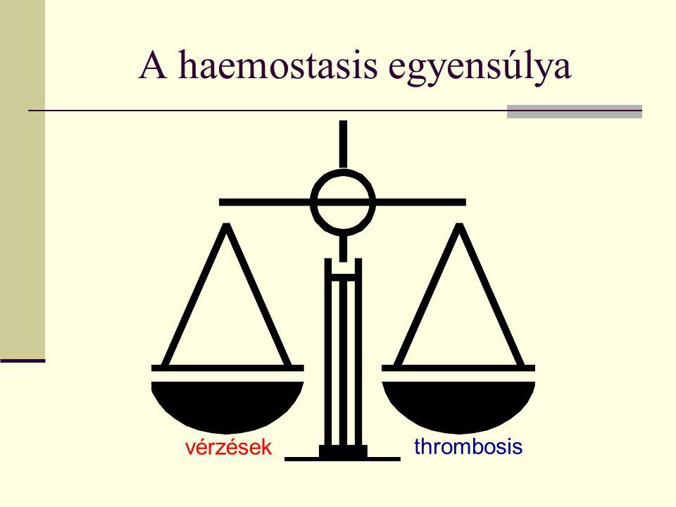 A haemostasis egyensúlya