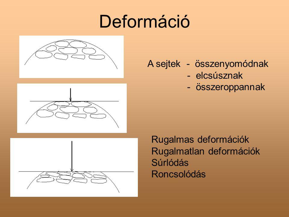 Deformáció A sejtek - összenyomódnak - elcsúsznak - összeroppannak