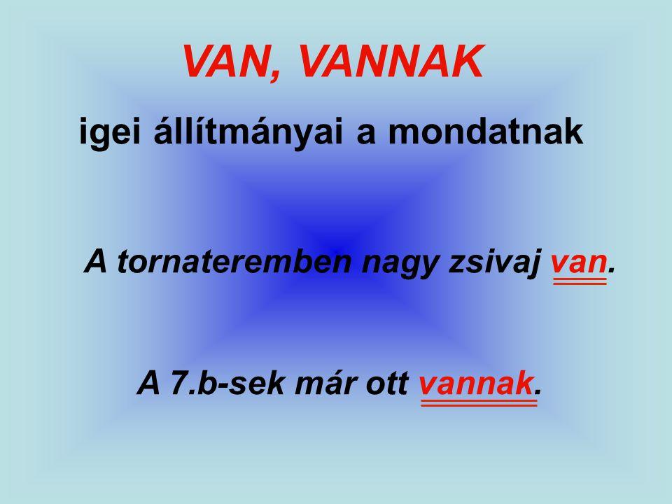 VAN, VANNAK igei állítmányai a mondatnak