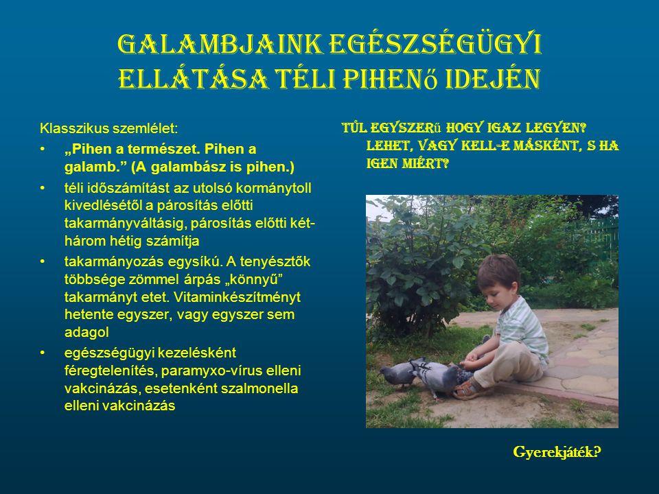 Galambjaink egészségügyi ellátása téli pihenő idején
