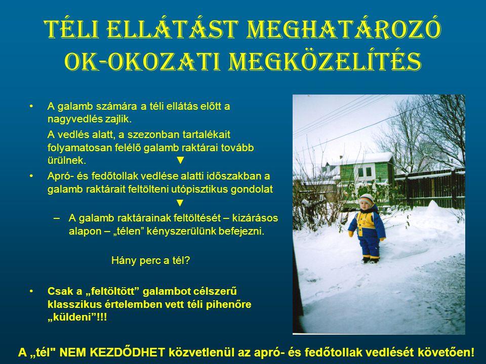 Téli ellátást meghatározó ok-okozati megközelítés