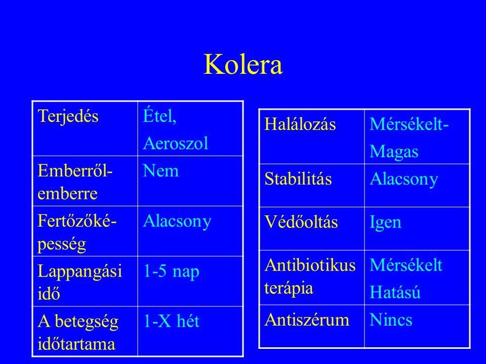 Kolera Terjedés Étel, Aeroszol Emberről-emberre Nem Fertőzőké-pesség