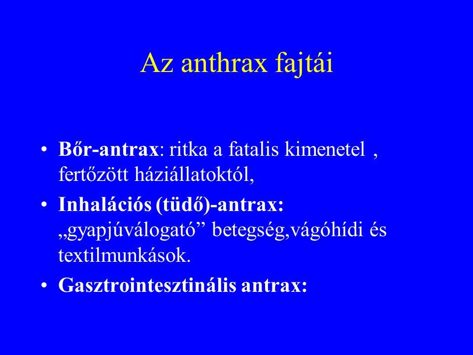 Az anthrax fajtái Bőr-antrax: ritka a fatalis kimenetel , fertőzött háziállatoktól,