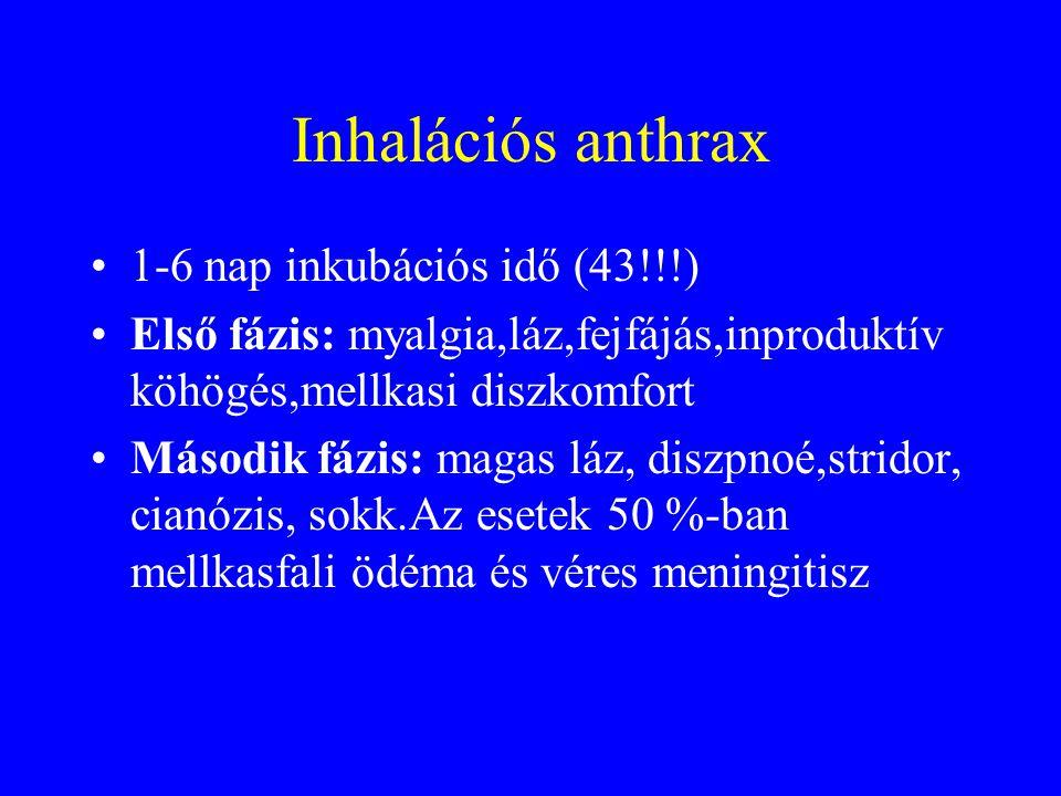 Inhalációs anthrax 1-6 nap inkubációs idő (43!!!)
