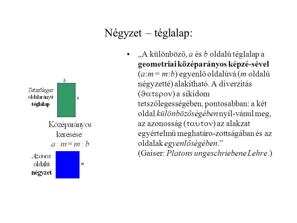 Négyzet – téglalap: