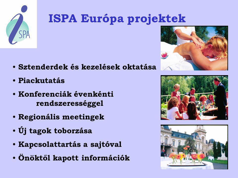 ISPA Európa projektek Sztenderdek és kezelések oktatása Piackutatás