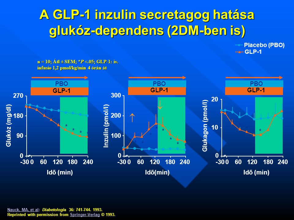 A GLP-1 inzulin secretagog hatása glukóz-dependens (2DM-ben is)