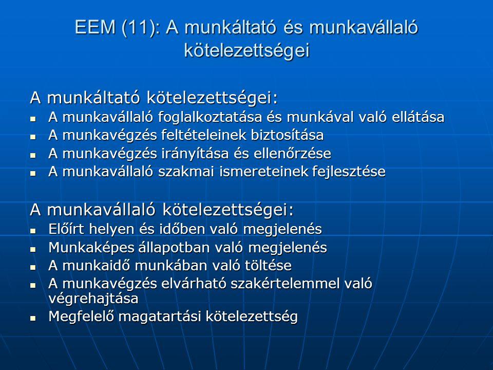 EEM (11): A munkáltató és munkavállaló kötelezettségei