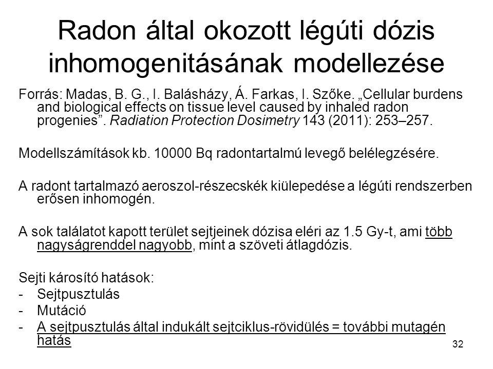 Radon által okozott légúti dózis inhomogenitásának modellezése