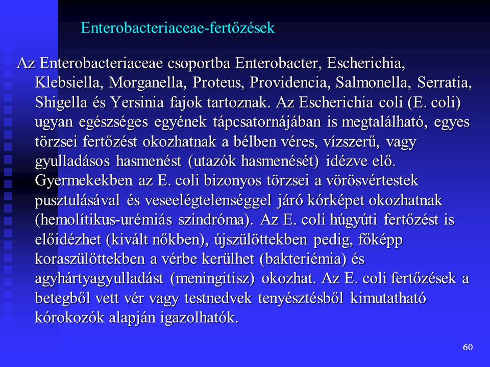 Enterobacteriaceae-fertőzések