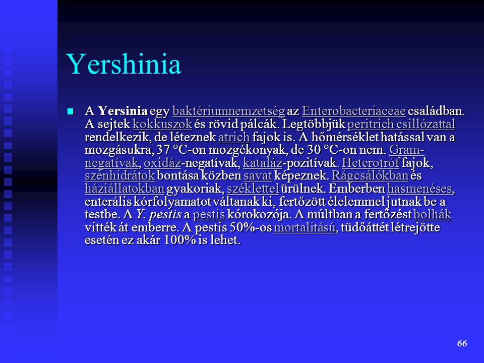 Yershinia