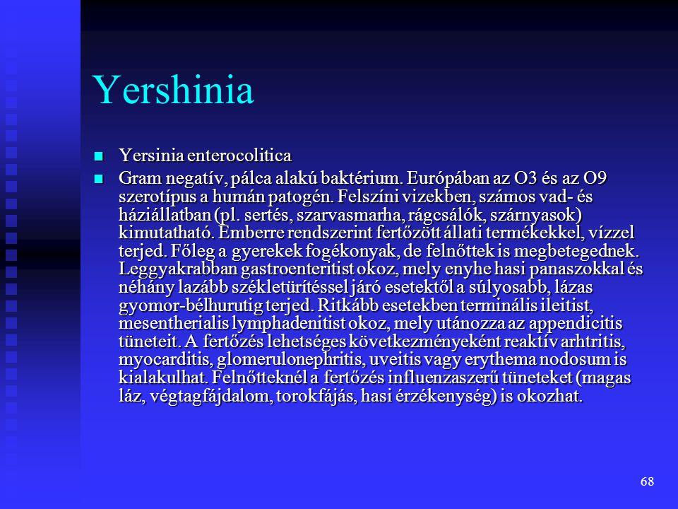 Yershinia Yersinia enterocolitica