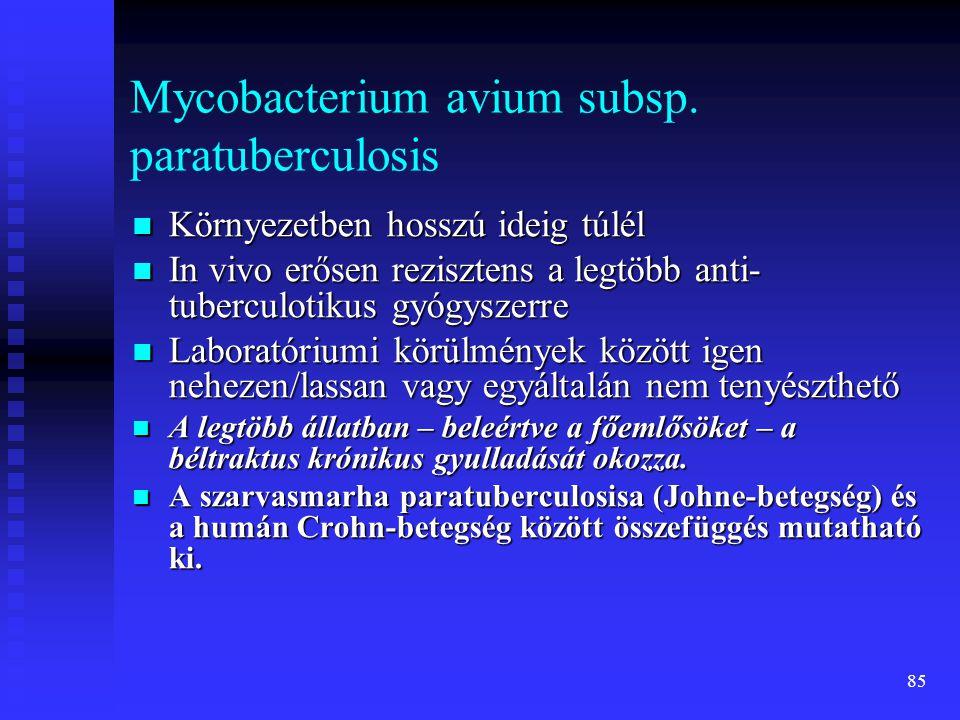 Mycobacterium avium subsp. paratuberculosis
