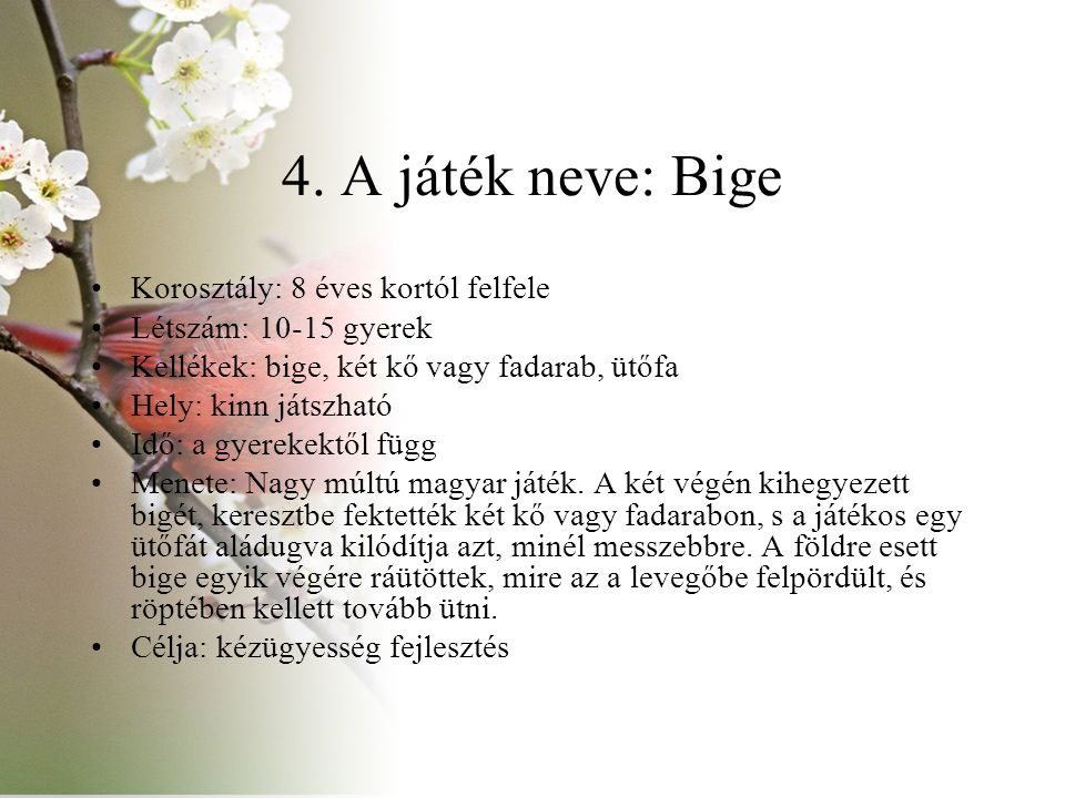 4. A játék neve: Bige Korosztály: 8 éves kortól felfele